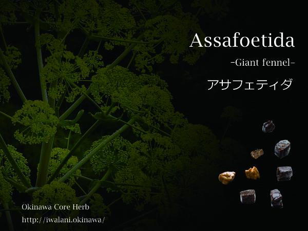 アサフェティダのイメージ