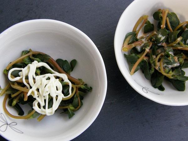 ニンブトゥカー(スベリヒユ)を美味しく食べるためにあれこれ試してみた
