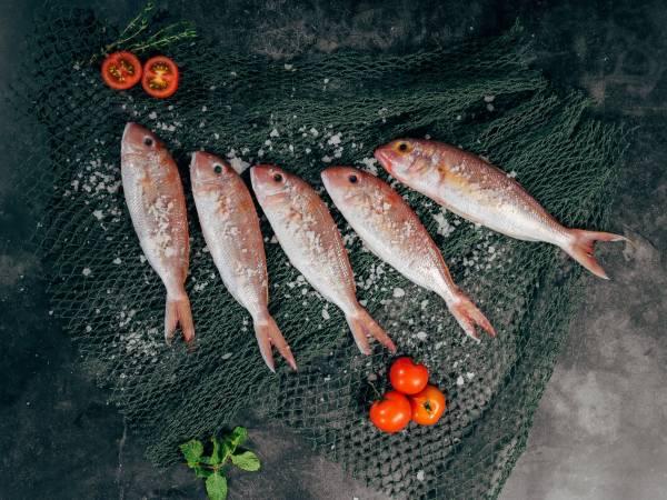 お魚に合うハーブを探せ!次はここから。