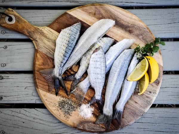 お魚に合うハーブを探せ!とりあえず、ここまで。